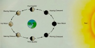 Phases of the moon as seen from Earth.