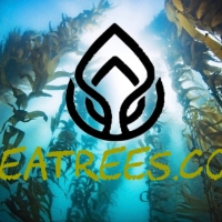 Saving The Rainforests---Of The Sea
